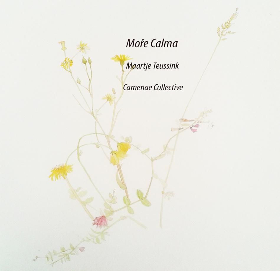 Moře Calma - Stringquintet in d-minor - 2015 - Album (CD)