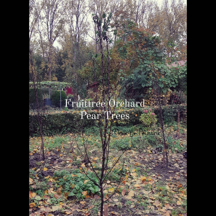 Fruittree Orchard - Peartrees